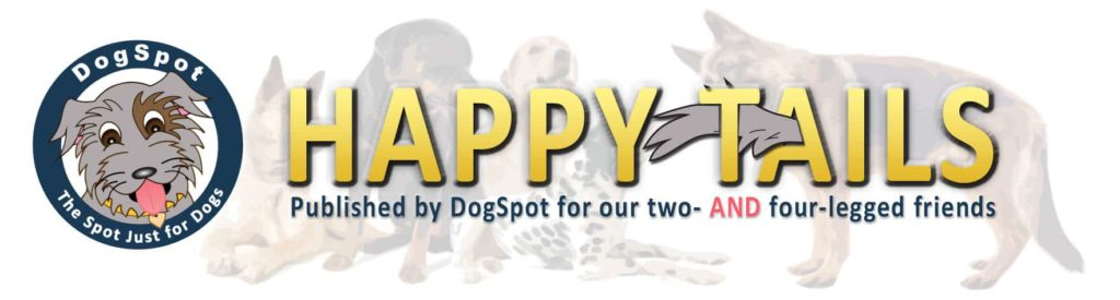 Happy Tails newsletter graphic